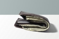 Will Smartphones Replace Wallets?