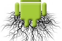 The Newbie's Guide to Rooting