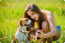 The Tagg GPS Plus Pet Tracker Makes It Easier To Keep Tabs On Your Four Legged Friend