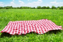 Chinavasion Choice: Gadgets For A Fun Picnic