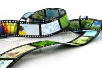 From DVD to SVCD and Beyond: Know Your Video Formats