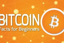 What is a Bitcoin and how does it work ?