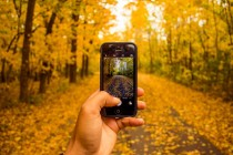 5 Wildlife Apps for Exotic US Destinations